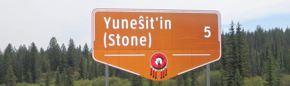 Yunesitin